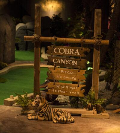 Cobra Canyon 1